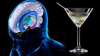 Aviso: el alcohol perjudica seriamente a tu cerebro.